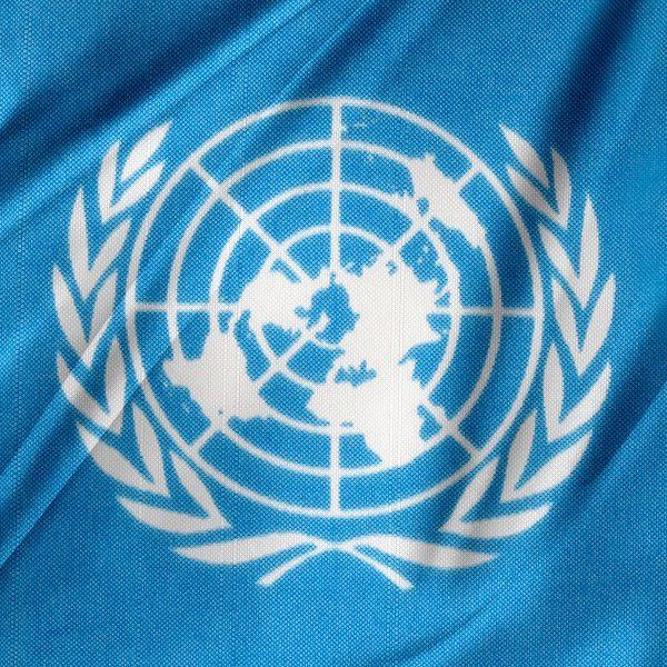 escudo Naciones Unidas